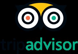 1200px-TripAdvisor_logo.svg